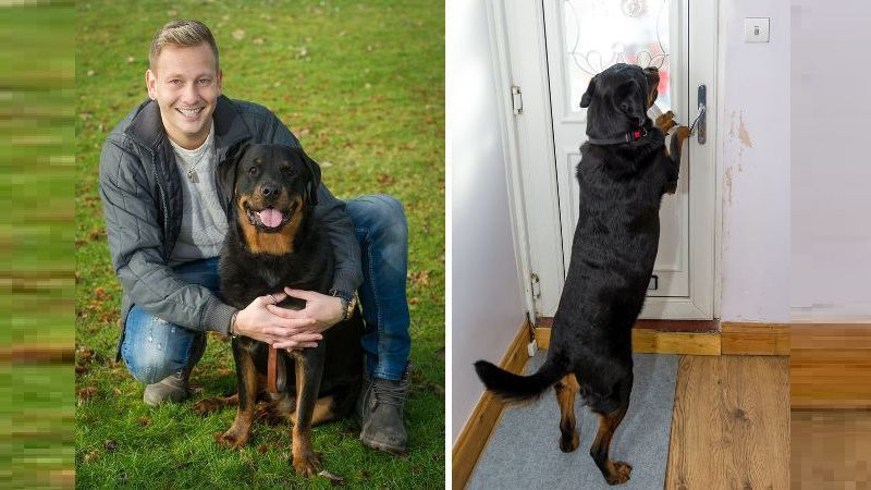 Rottweiler Saves Owner By Opening Door For Paramedics After He