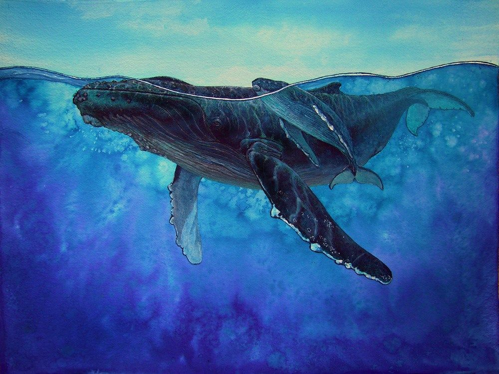 Humpback whales by carlos hiller whale art whale