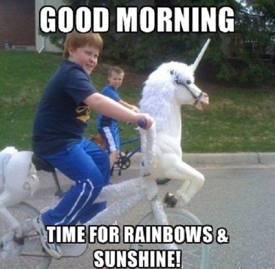 Image Result For Good Morning Meme Unicorn Memes Good Morning Meme Unicorn Birthday Meme