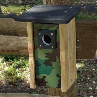 The Backyard Bird Company WA-BC-CAM-G Bluebird Convertible ...