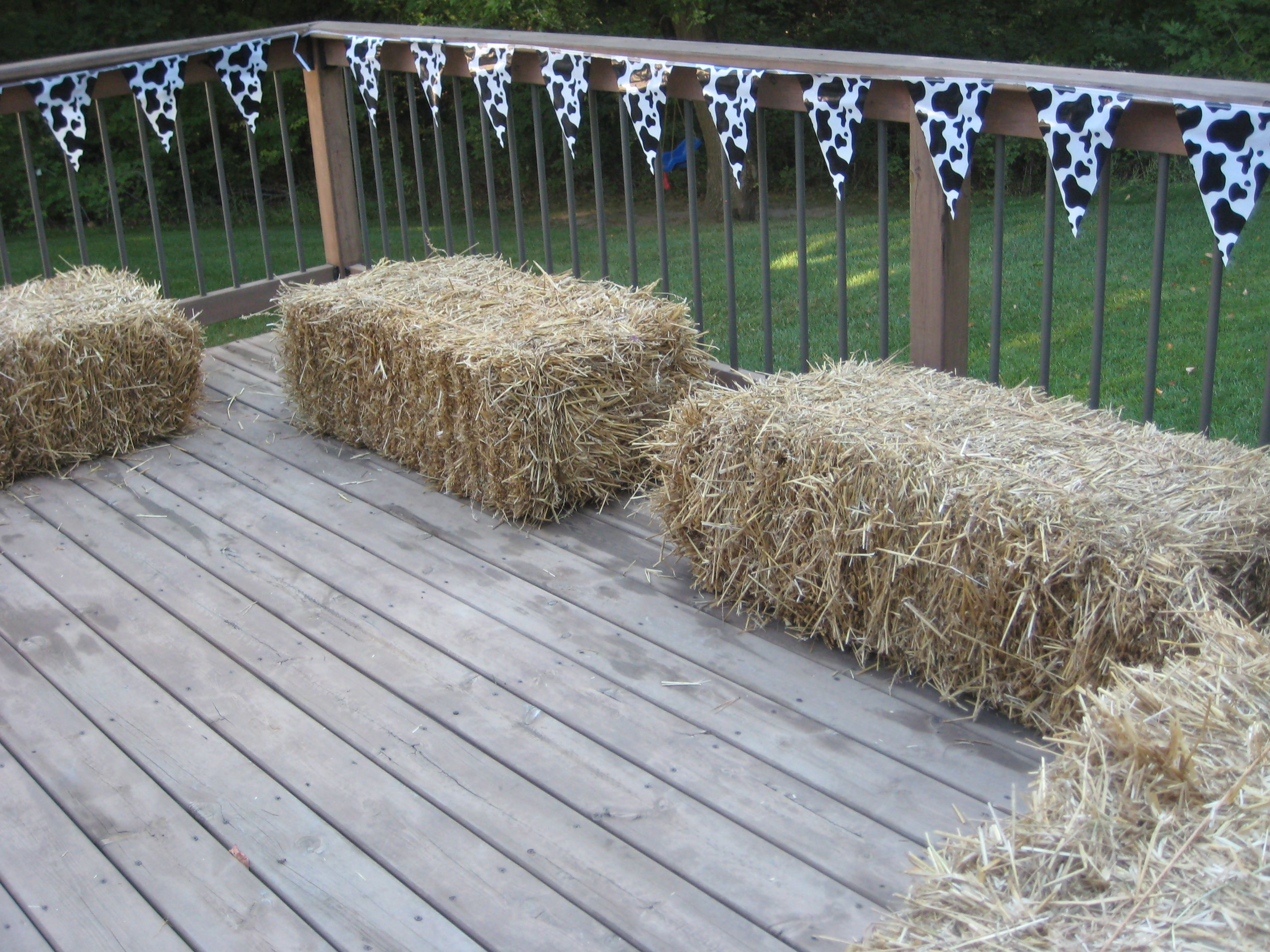 Barnyard Birthday additional seating Drews 1st Birthday