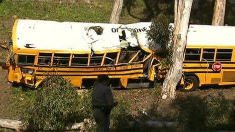 What do you think? Should school buses have seat belts? Several