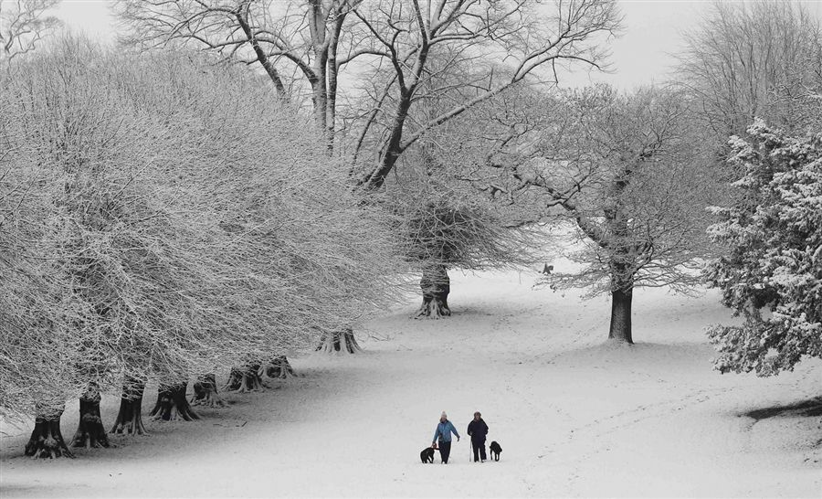 Winter scene at Lyme Park, near Manchester, England.