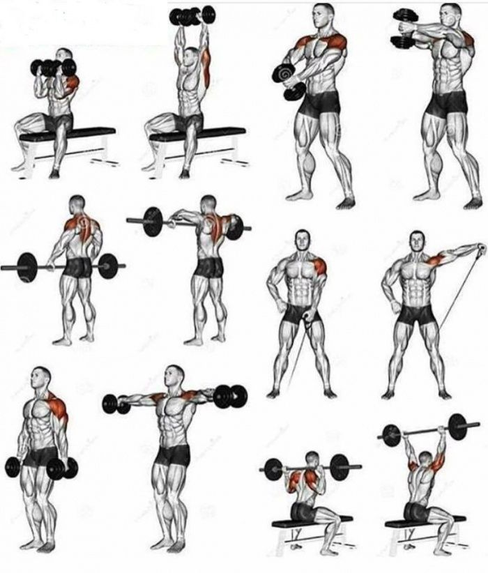 Shoulder Workouts Healthy Fitness Training Plan For Stronger