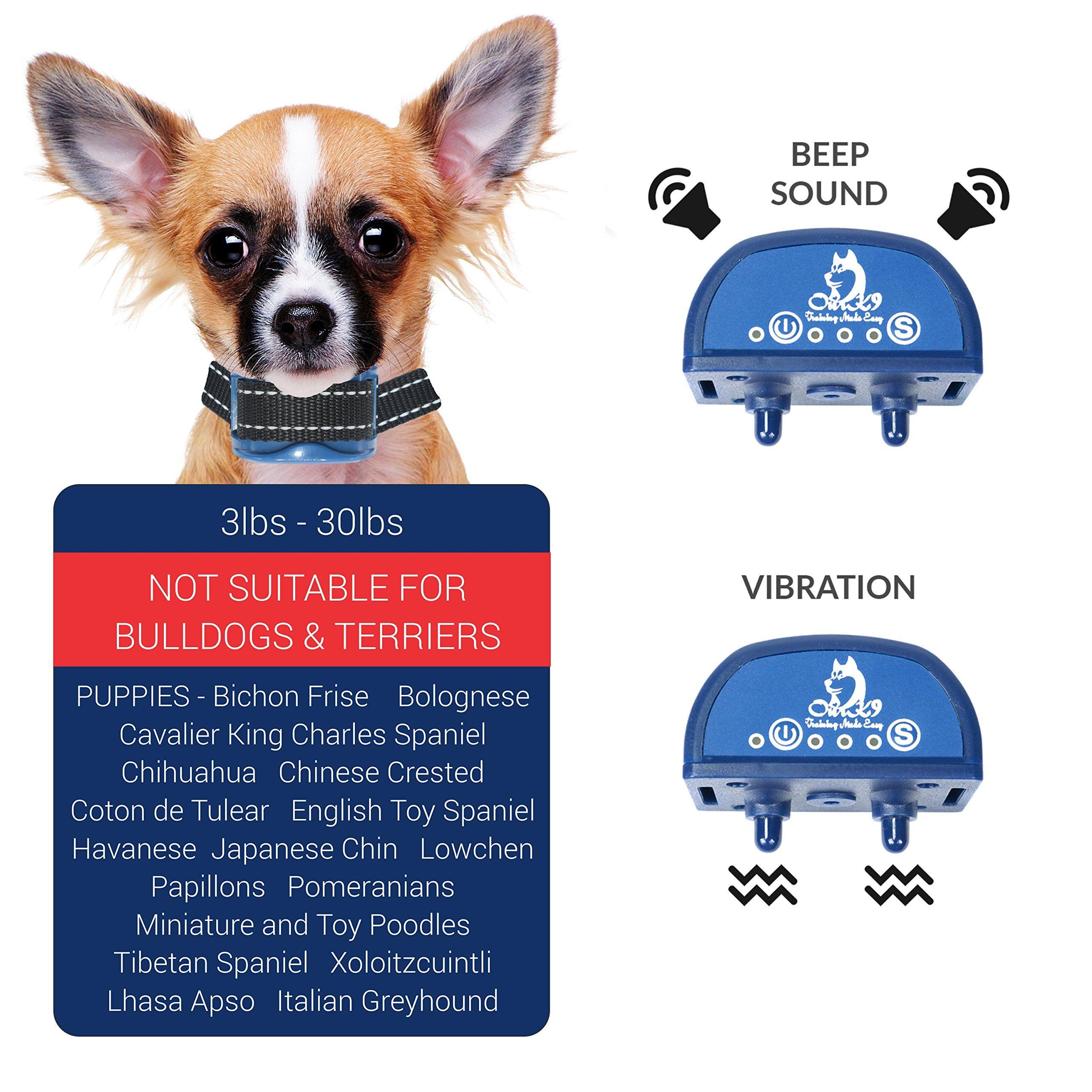 Pin On Dog Training Tools