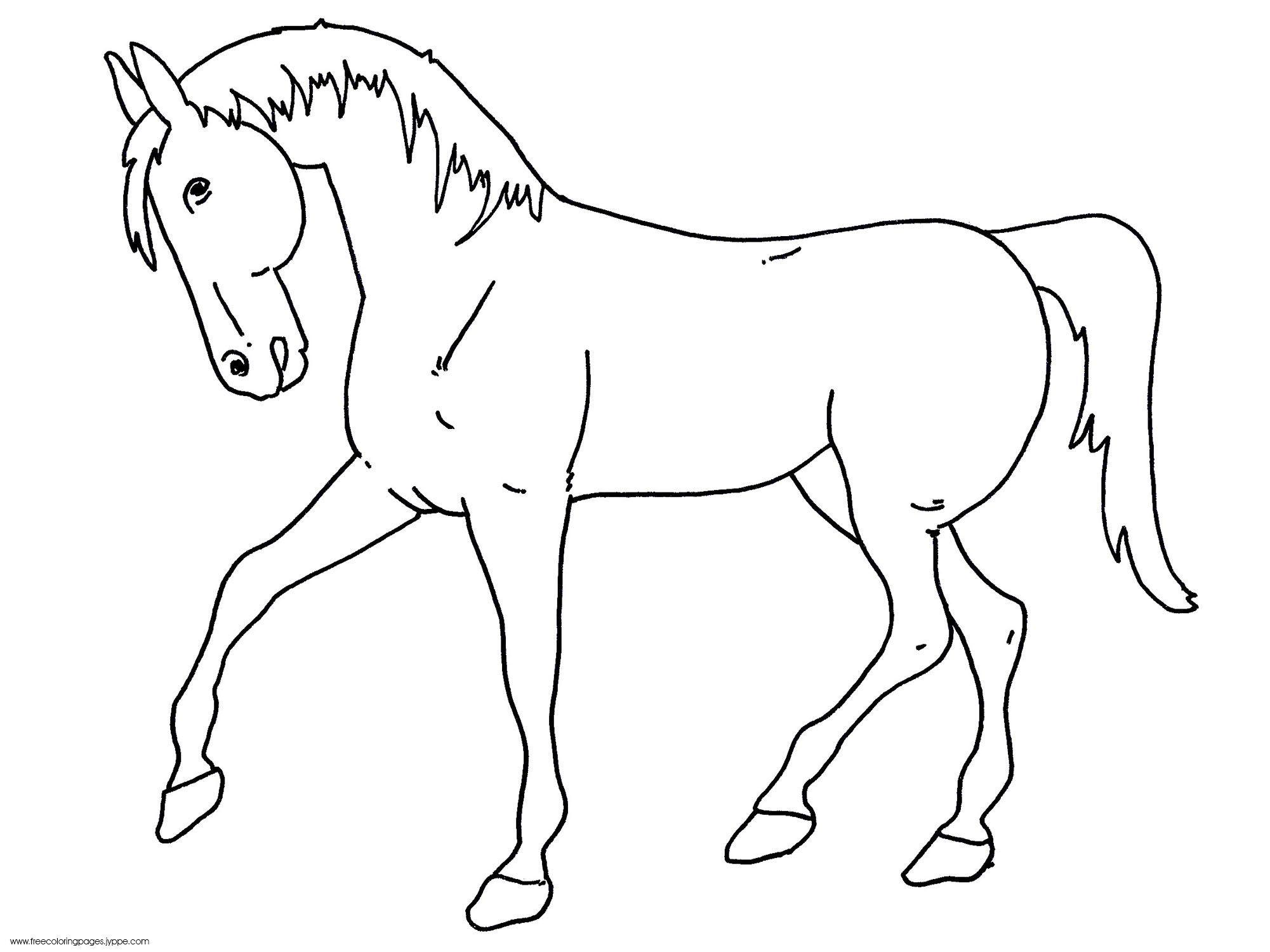 Horse Coloring Shets Free Printable Horse Outline To Color Free