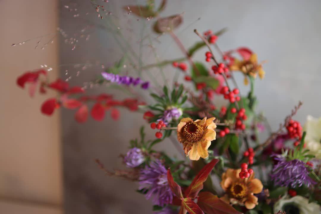 좋아요 15개, 댓글 0개 - Instagram의 플라워아뜰리에 꽃비(@kkotbee_3663)님: 시간이 흐름에도 멋진 백일홍 느낌충만한 꽃