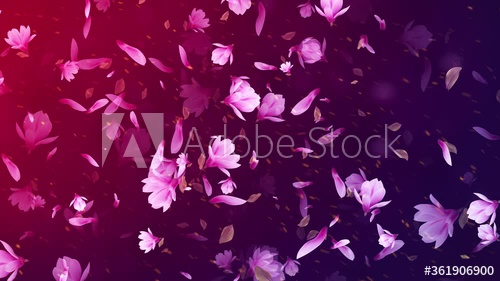 Stock Footage Of Natural Beauty Falling Autumn Magnolia Flower Petals And Leaves Blowing In The Wind Background Motion S Magnolia Flower Flower Petals Magnolia