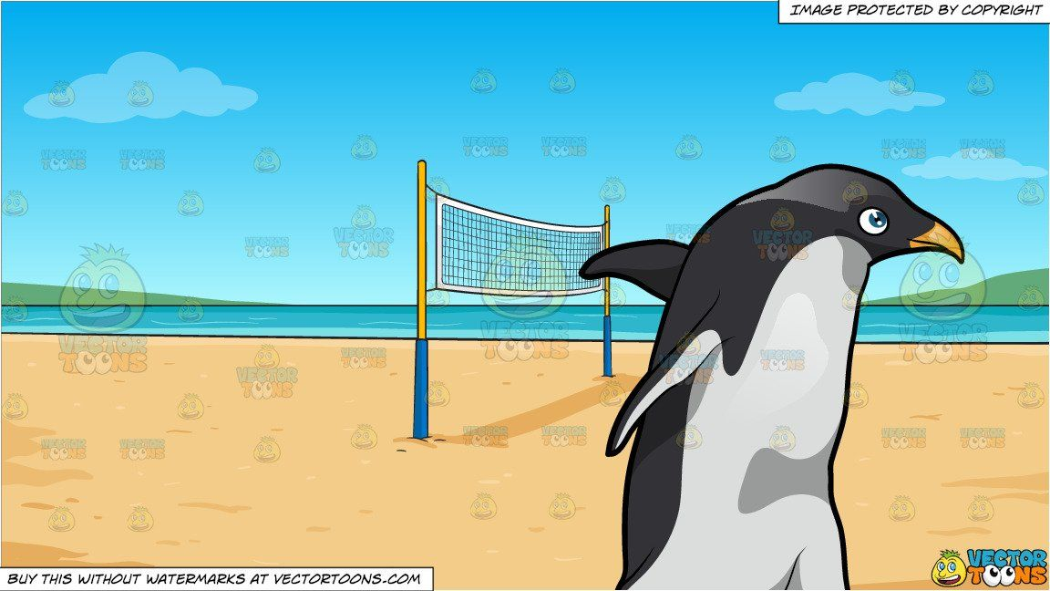 A Walking King Penguin And Beach Volleyball Background In 2020 Volleyball Backgrounds King Penguin Beach Volleyball