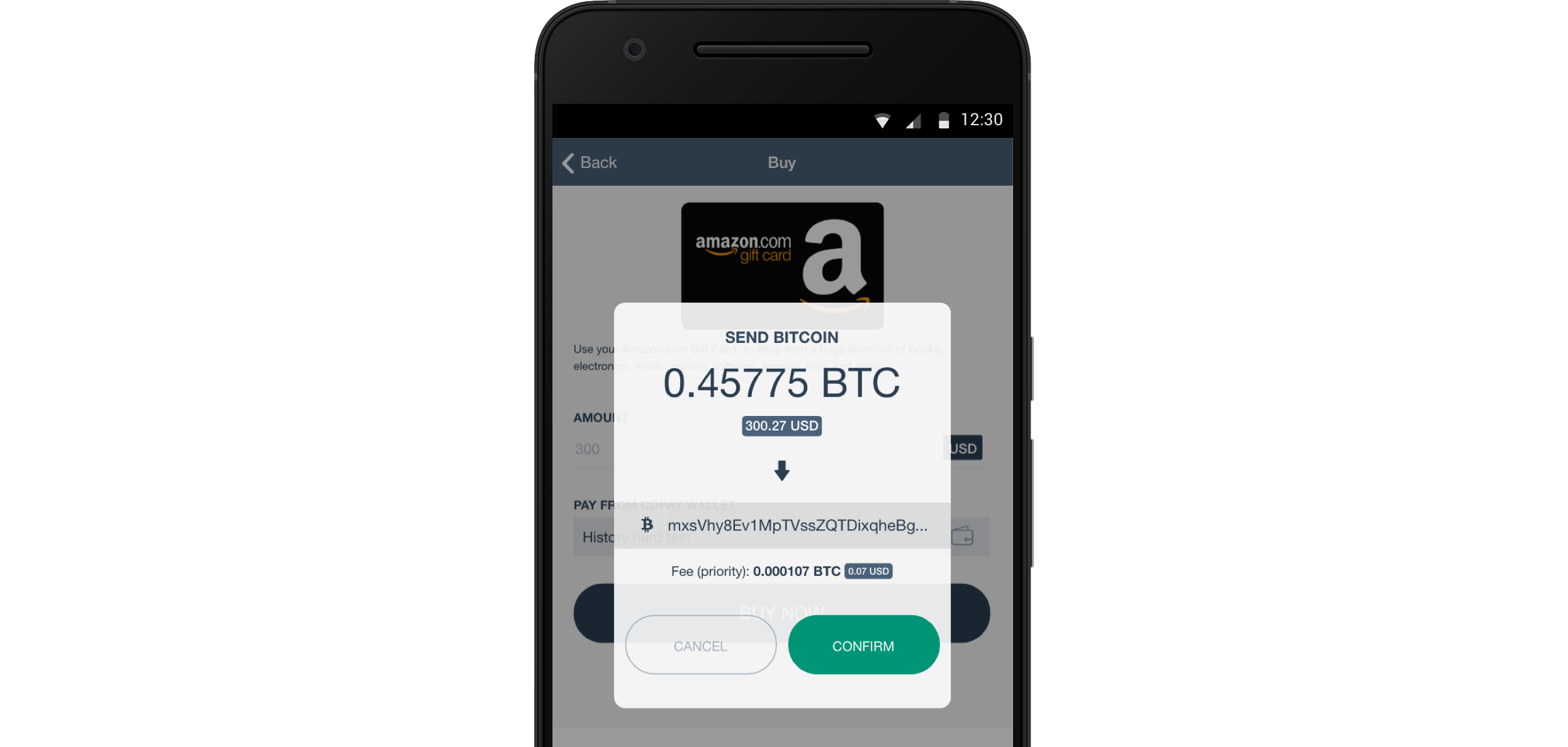 Buy Amazon Gift Cards with Bitcoin in Your Copay Wallet ...