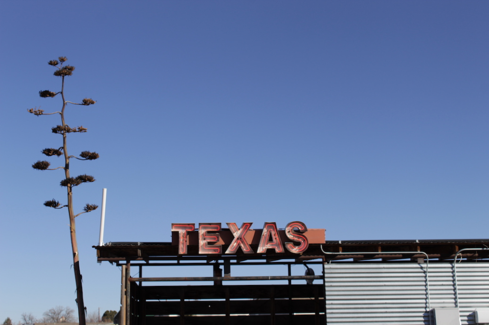 West Texas Road Trip: Marfa and Big Bend National Park ...