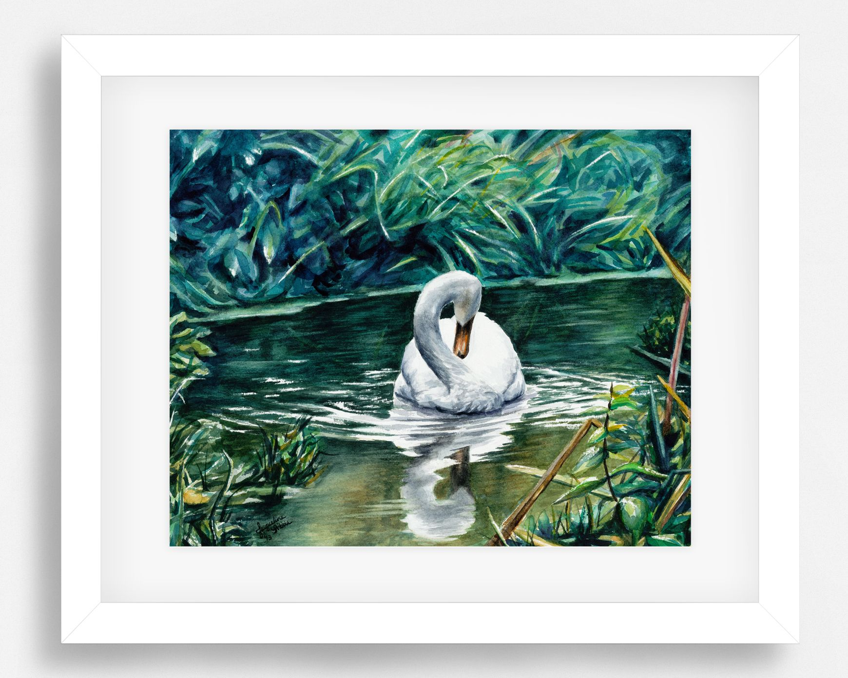 Shy Swan wildlife watercolor painting by Jacqueline Tribble. Available as a fine art print on Etsy. Save 10% with coupon code PIN10