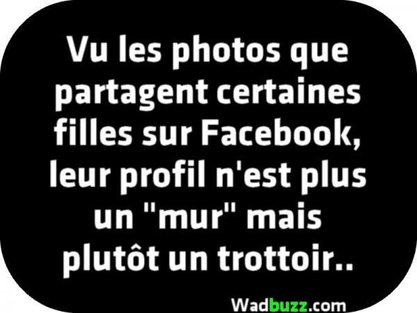 Citation Photo De Profil Humour Transartistic