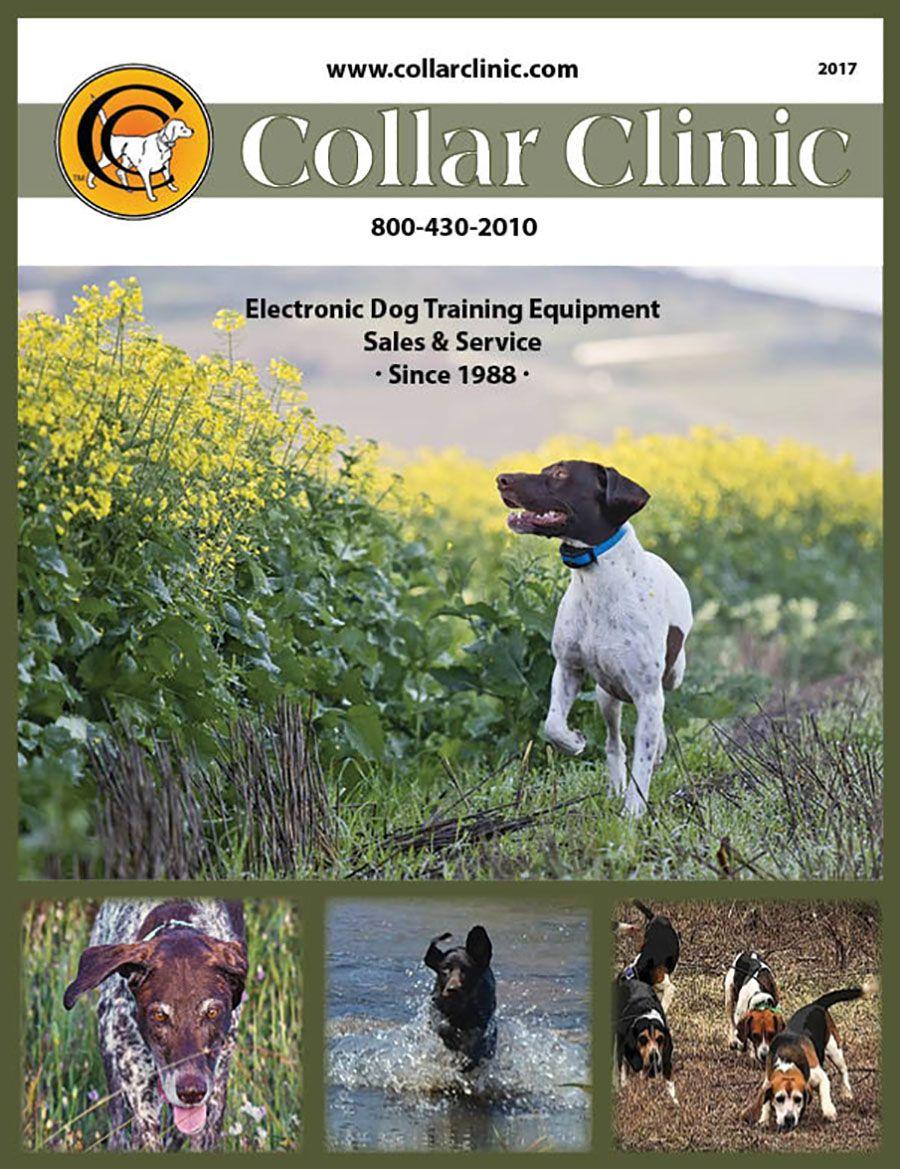 Free Color Catalog 2017 Dog Training Collar Dog Training Dog