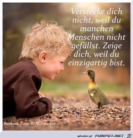 Pin von Tünde Kiss auf zitat+bild | Animals, Precious ...