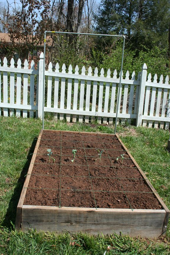 More Raised Bed And Sqft Gardening Info