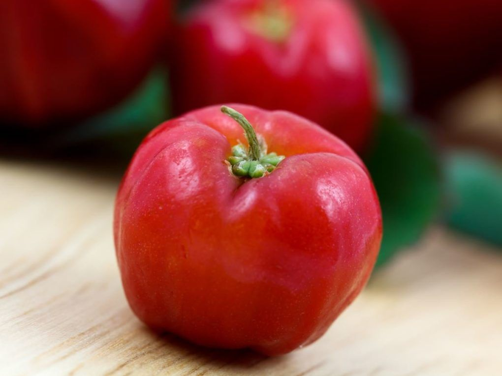 "Some of the most unique health benefits of acerola include its ability to manage diabetes, reduce signs of aging, prevent certain types of cancer, improve heart health, increase circulation, reduce allergic reactions, stimulate the immune system, increase eye health, protect the skin, and improve mood. Acerola is an unassuming shrub or small tree that bears a delicious cherry-like fruit, which is why you usually hear the term ""acerola cherry"", rather than just acerola."
