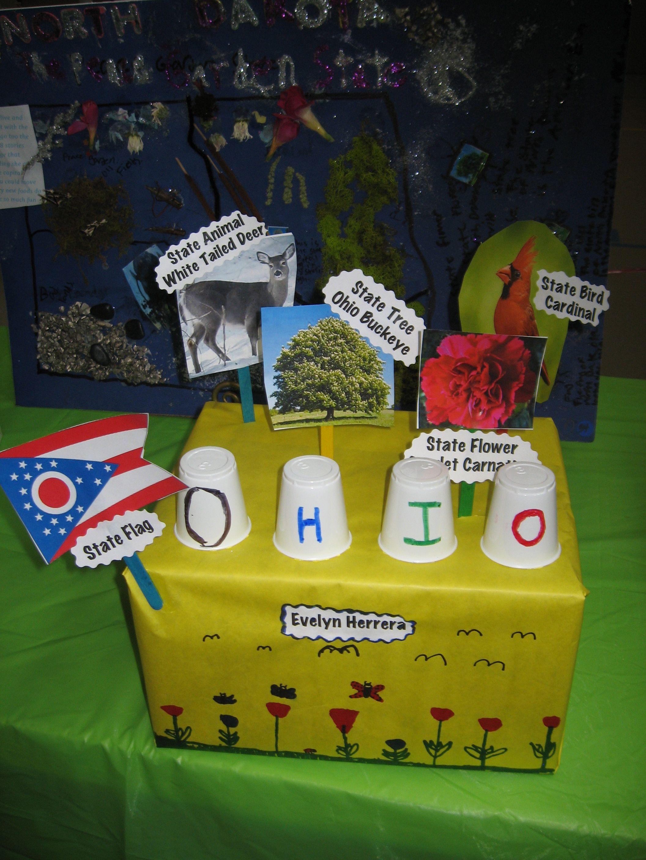Ohio 2015 state float projects pinterest ohio social ohio 2015 buycottarizona