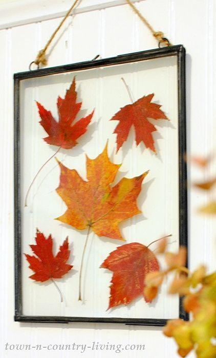 Pressed Fall Leaves Wall Art Leaf Art Diy Fall Wall Decor Pressed Flower Crafts