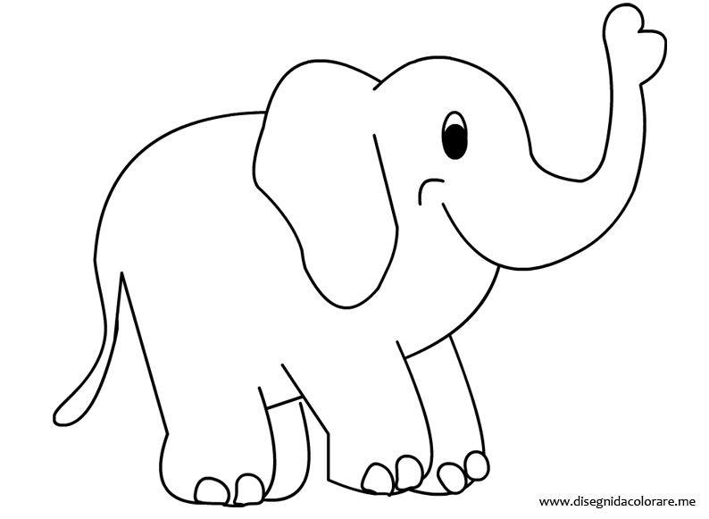 Elefante Da Colorare Disegni Elefante