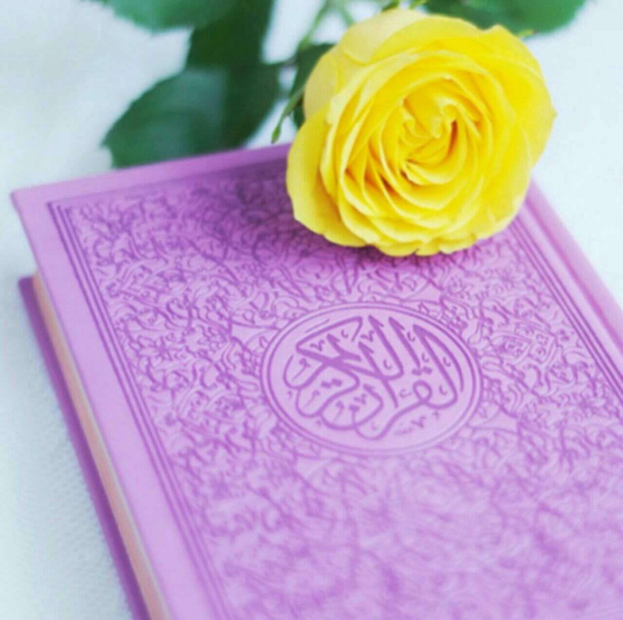Pin Oleh Hamid Di Quran Gambar Bunga Kartun