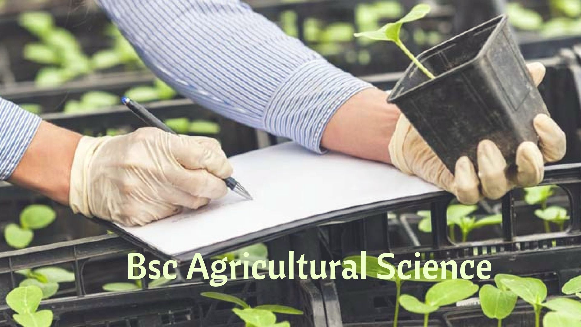 Are you willing to make your future in Agriculture field