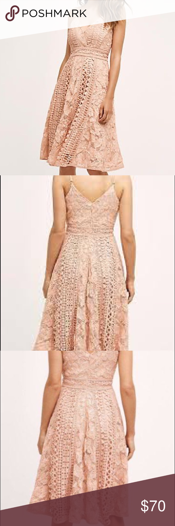 Anthropologie hd in paris astrid dress size p nwt