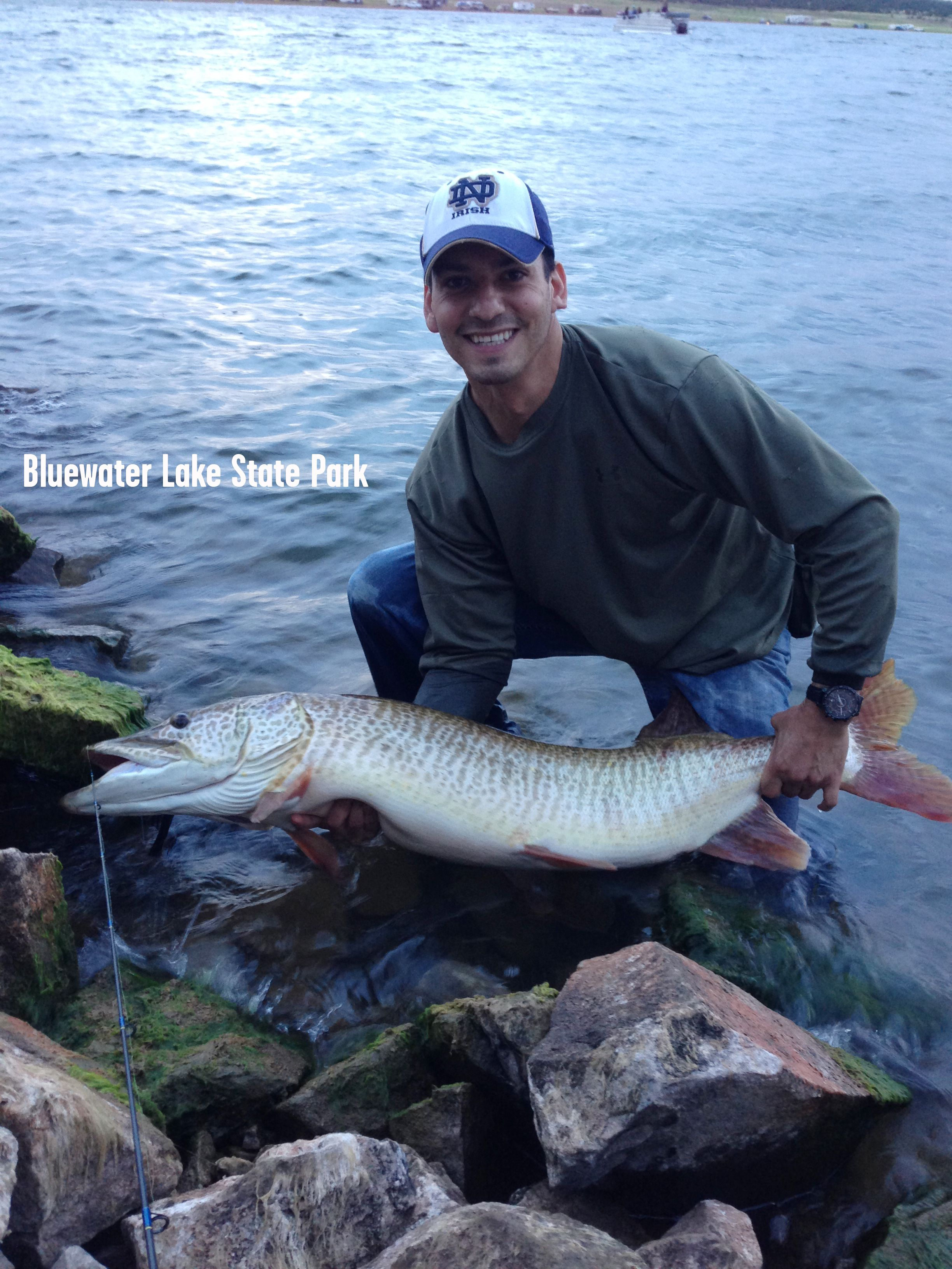 Tiger Muskie At Bluewater Lake State Park Nm Going Fishing Hunting Fishing Bluewater
