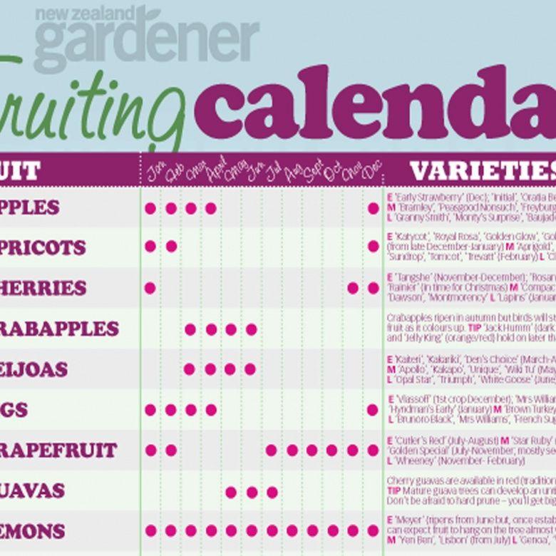 Fruit Harvesting Calendar Nz Gardenernz Gardener Free Download Fresh Fruit Recipes Fruit Fresh Fruit