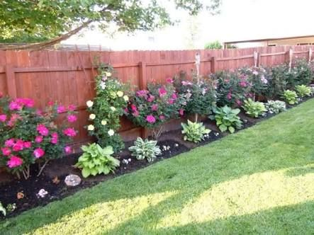 Image Result For Easy Garden Ideas Along Fence Line Privacy Fence Landscaping Landscaping Along Fence Backyard Landscaping Designs