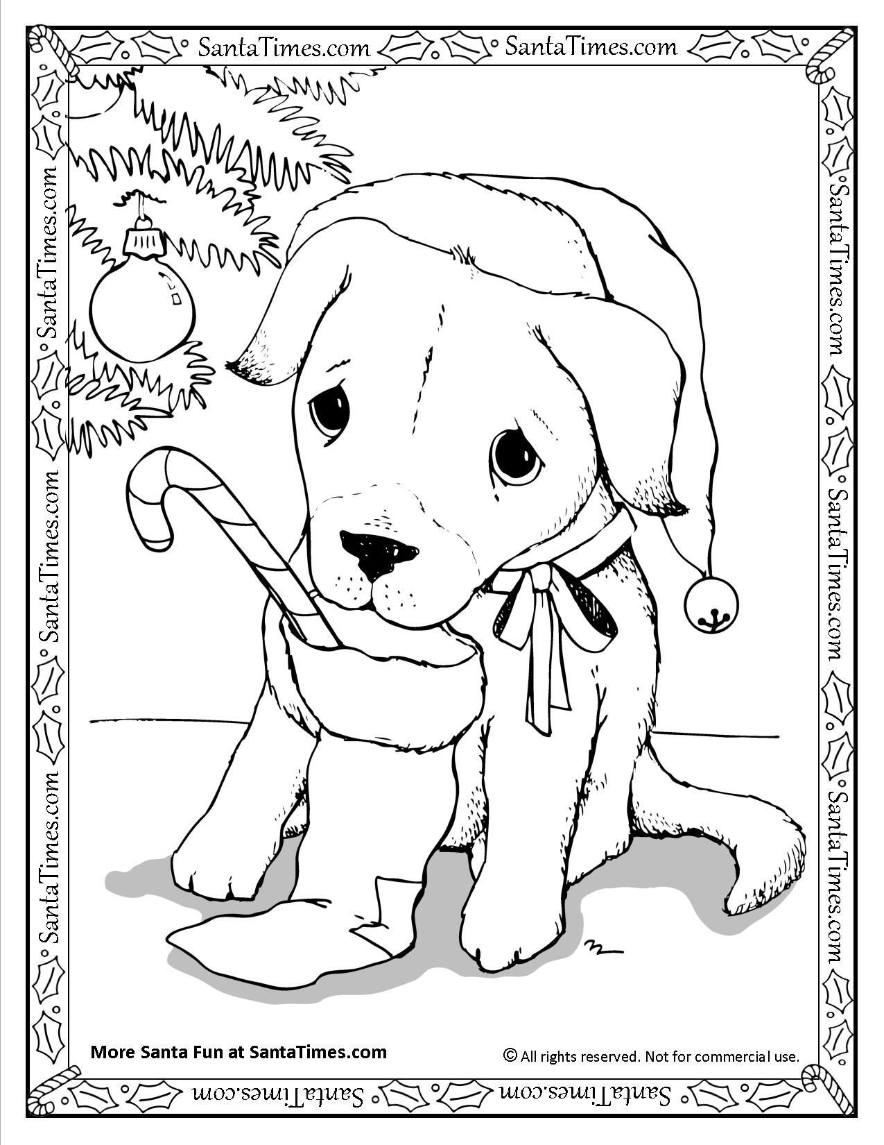 - Puppy Christmas Coloring Pages A Dog In Stocking Page Sheets