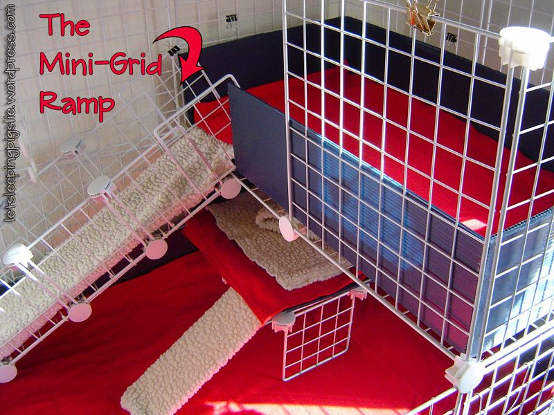 Cage building the mini grid ramp pig stuff and animal for Simple guinea pig cage