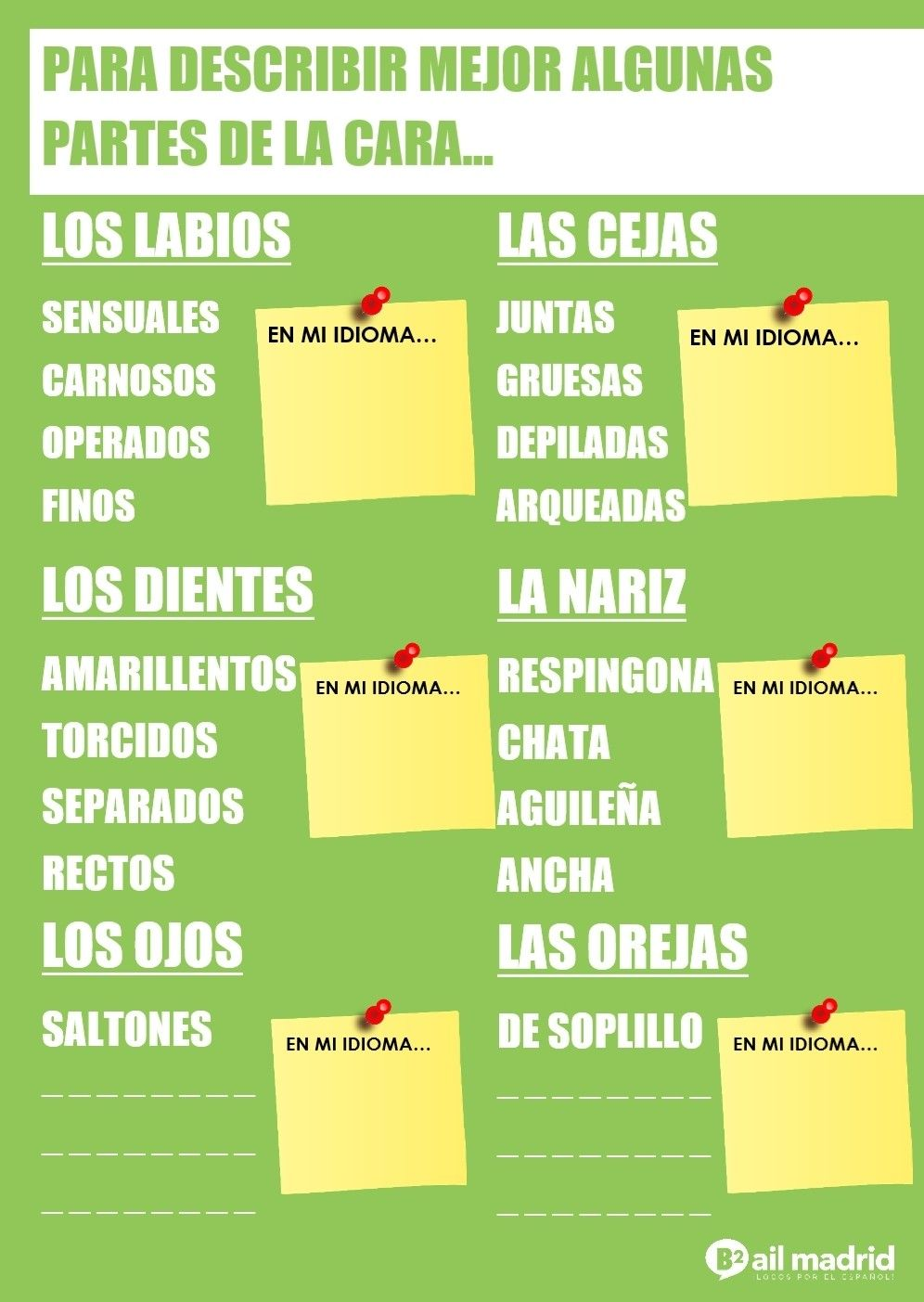 Para Aprender Vocabulario Descriptivo Más Preciso De Algunas Partes De La Cara Apréndete Esta Chuleta Y Complétala Con Otras Palabras Para Practicar Espagnol