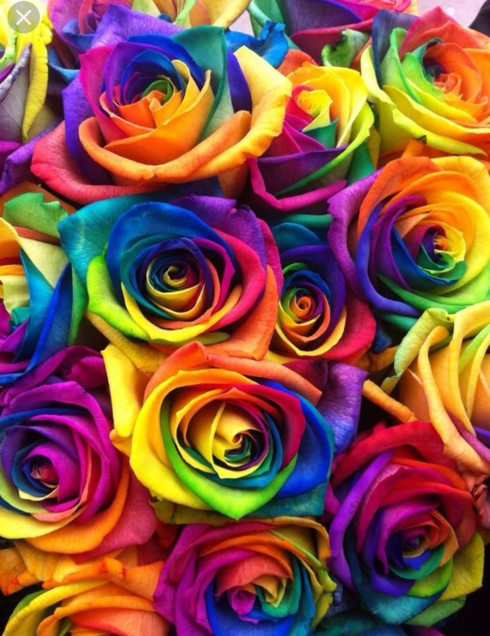 Pin By Hemisha On Floral With Images Rainbow Wallpaper Iphone