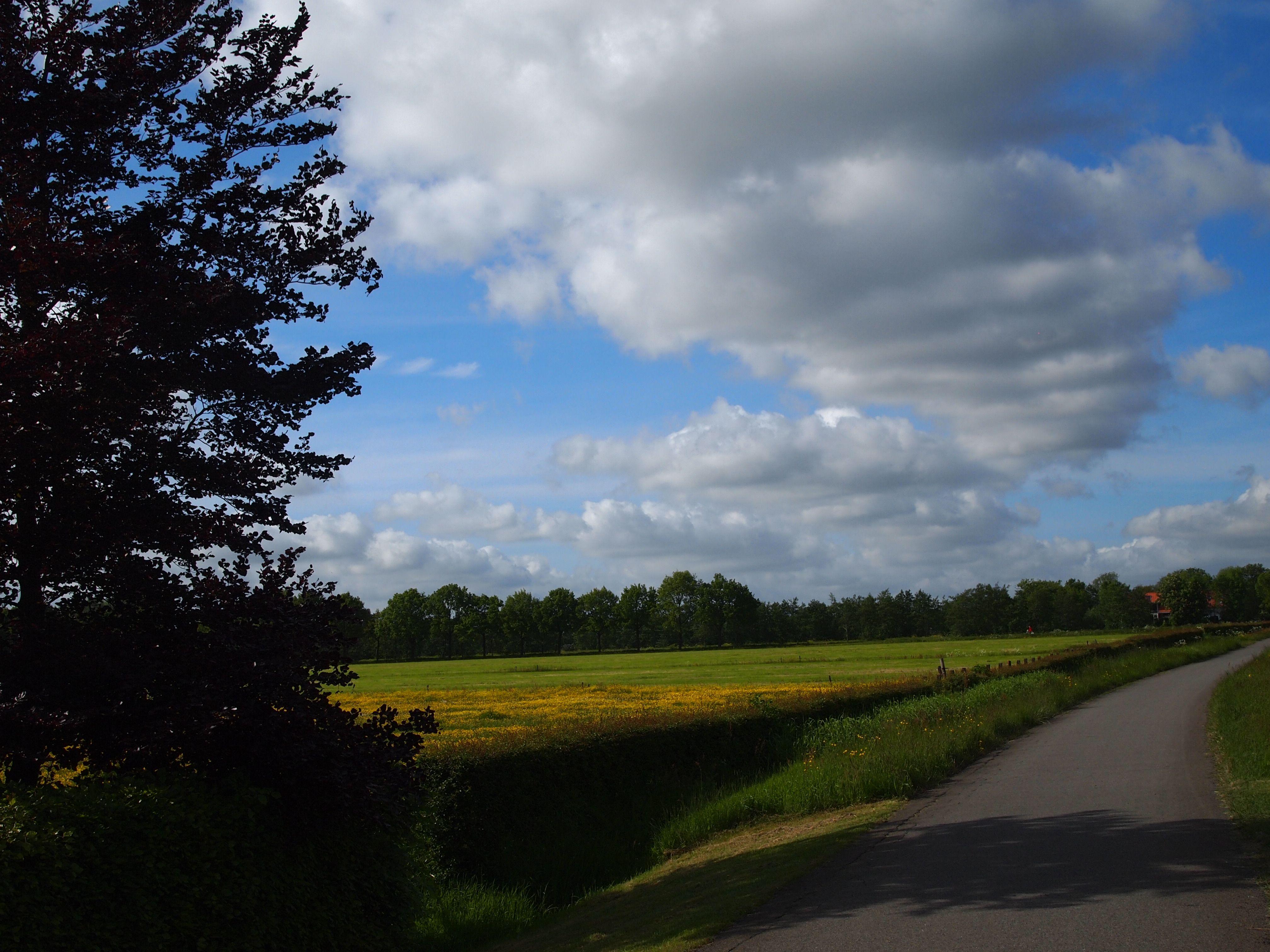 platteland friesland  the Netherlands. bayke foto.