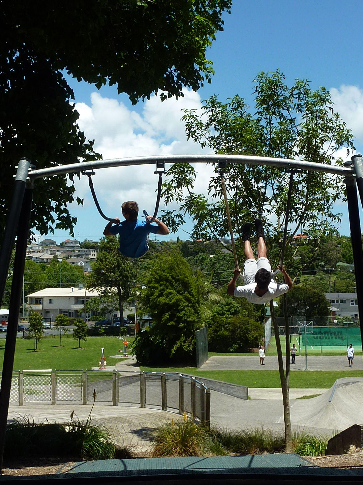 Marlborough Reserve big swings