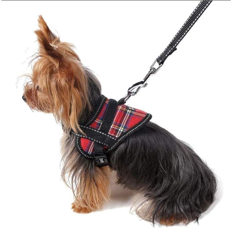 Sofie Small Dog Harness Dog Harness Luxury Dog Collars Small Dogs