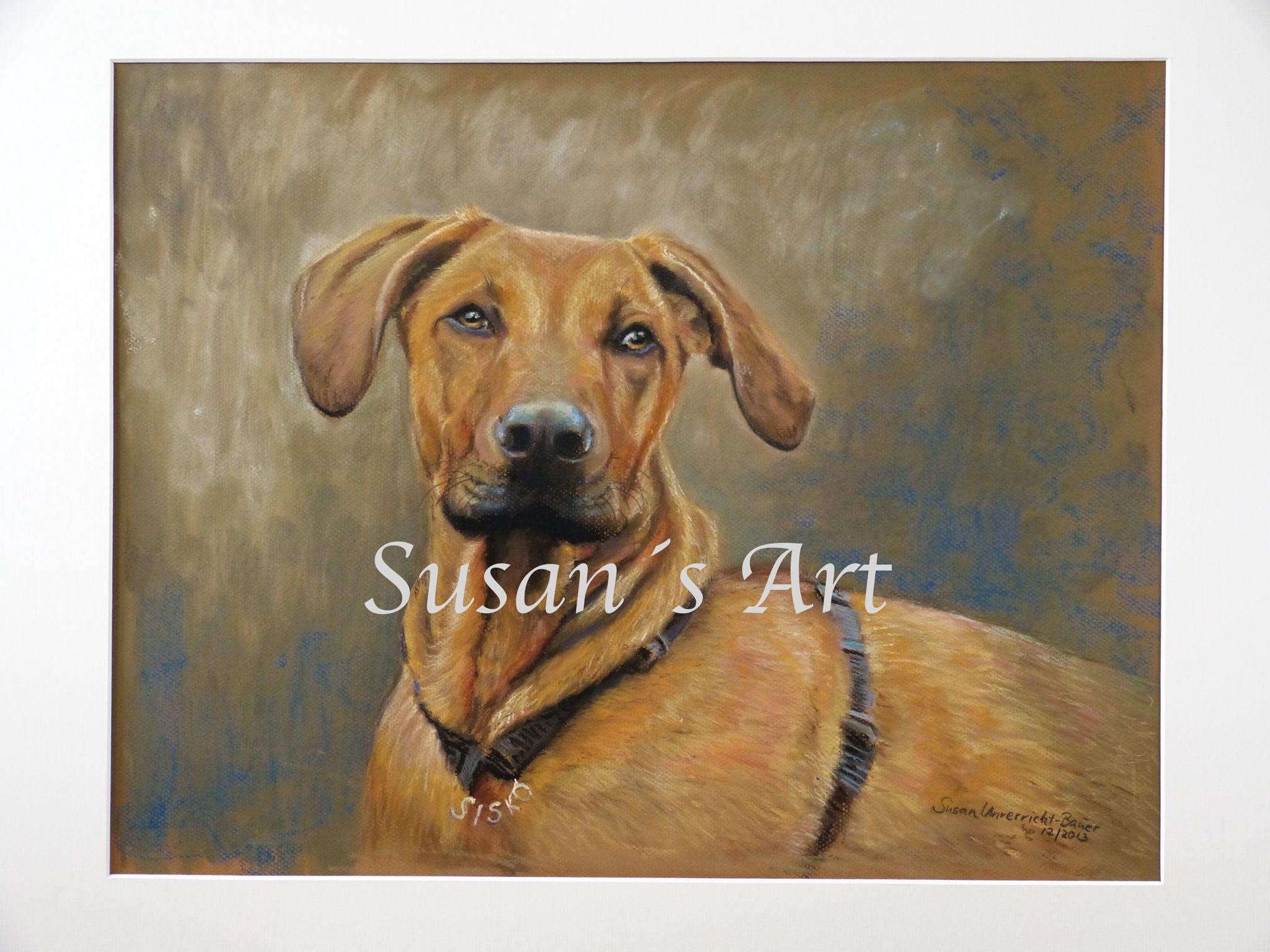 Tierportraits vom besten Freund des Menschen in Pastell. Mehr auf Susan's Art. Nicht nur Hunde, sondern auch Pferde.