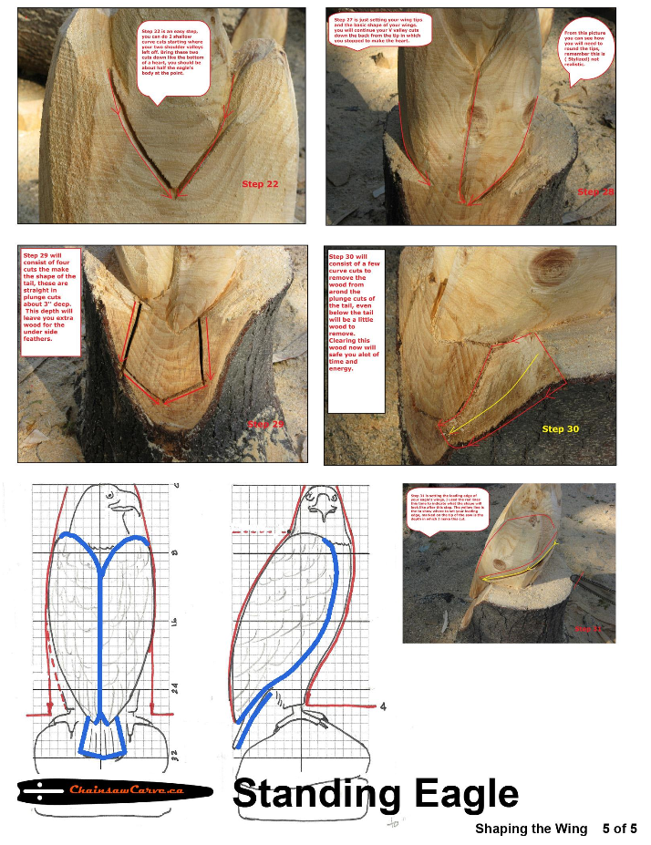 Chainsaw carving patterns standing eagle of