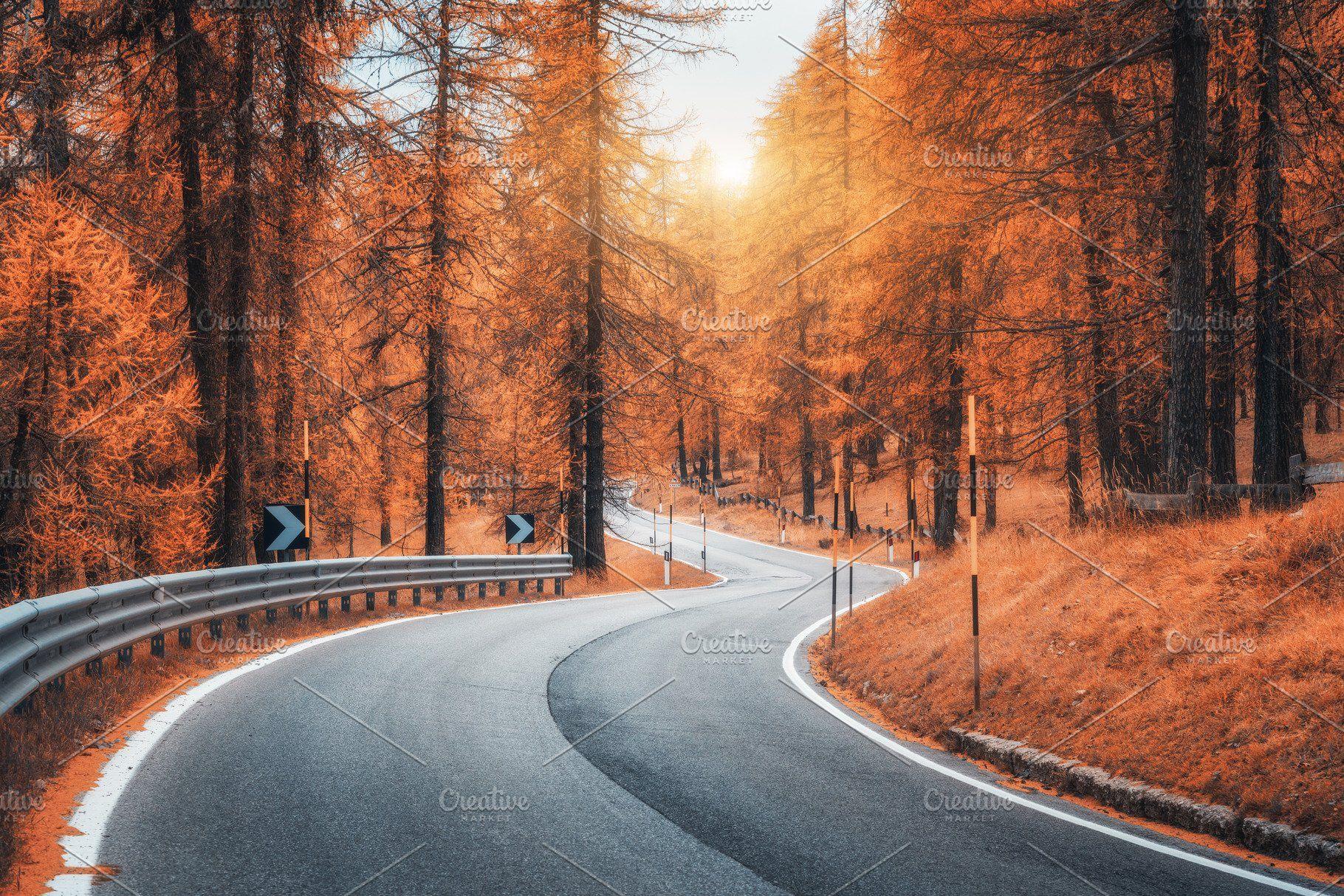 Beautiful winding mountain road autumn forest beautiful
