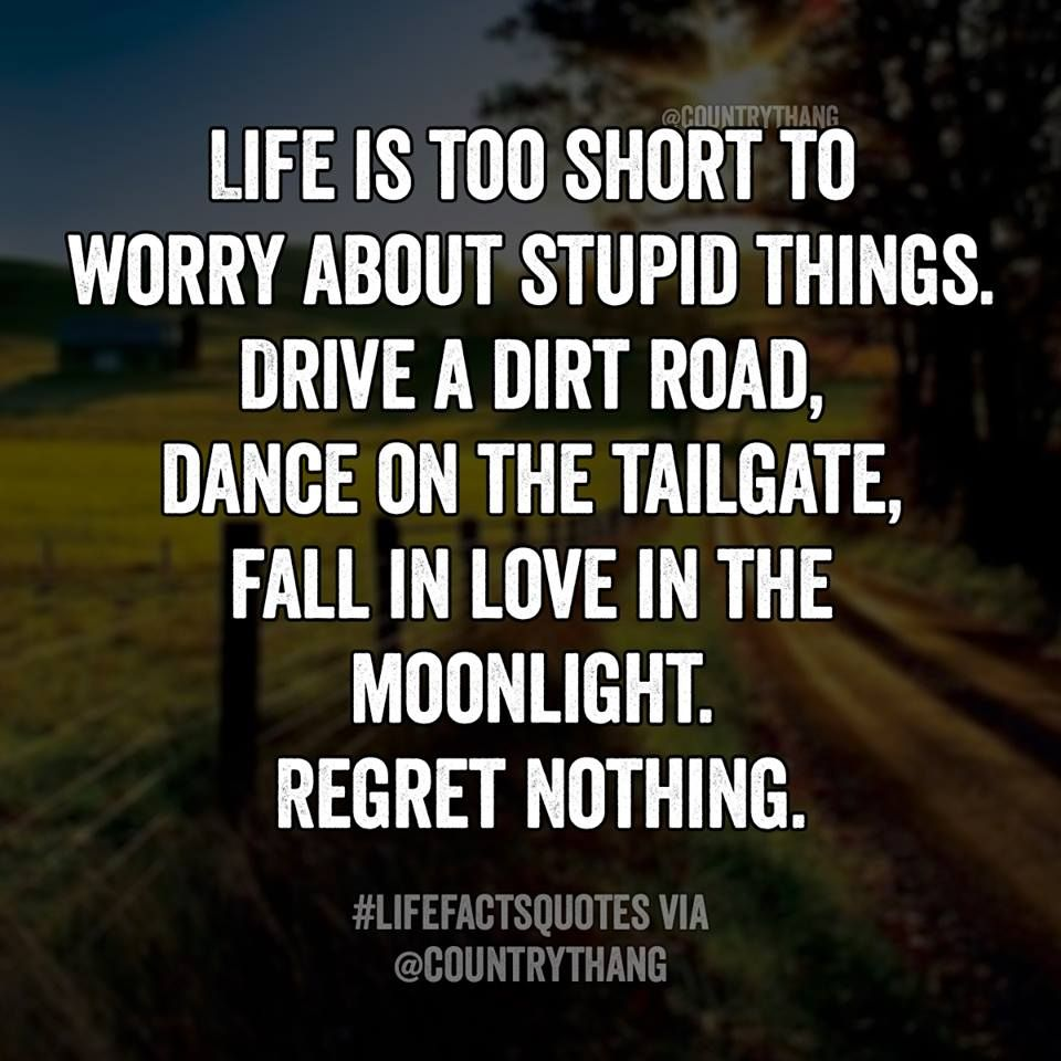 Quotes About Saying Stupid Things: Life Is Too Short To Worry About Stupid Things. Drive A