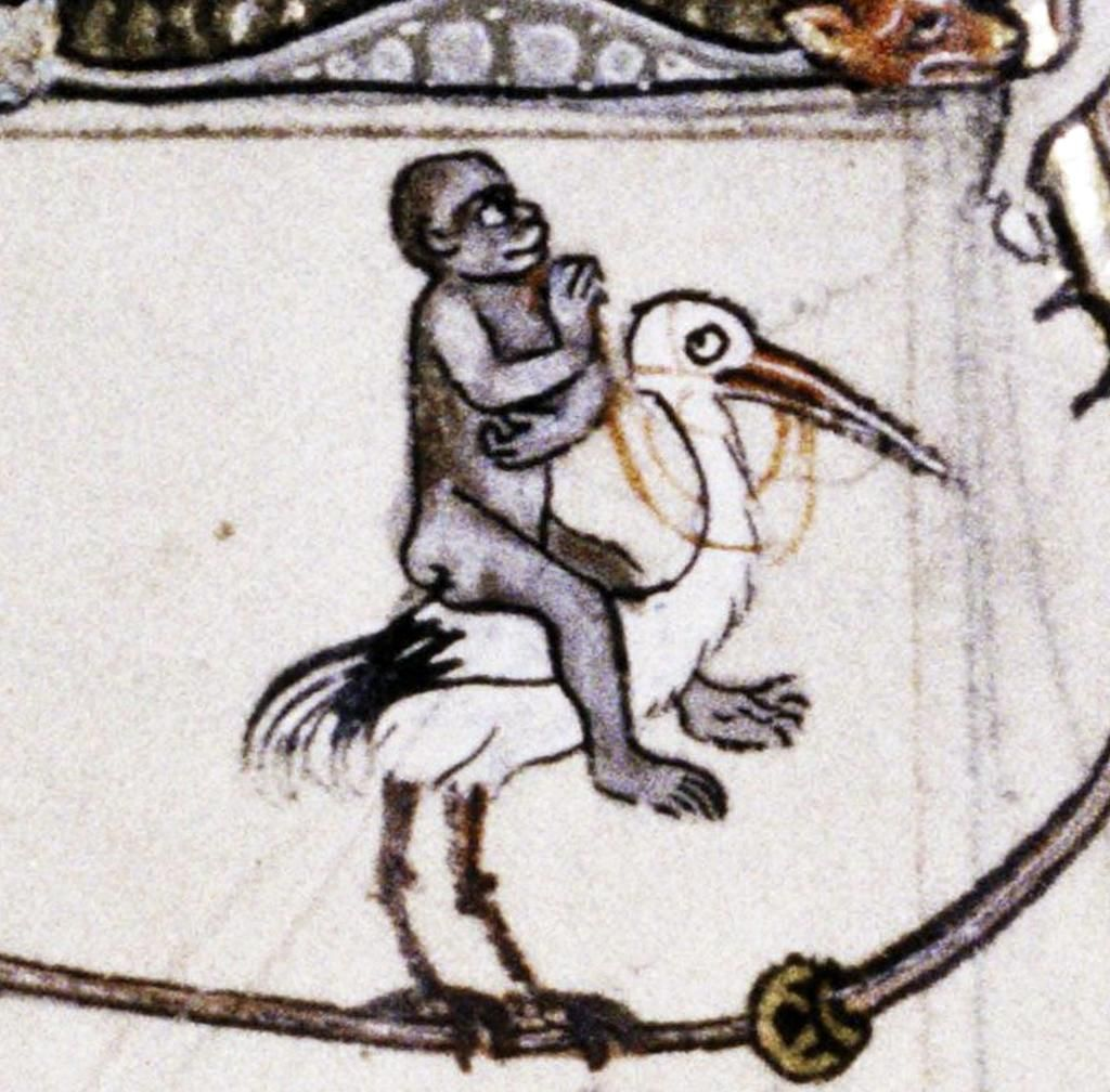 Rider on the stork, psalter, England 13th century (Bodleian Library, MS. Douce 5, fol. 211v)