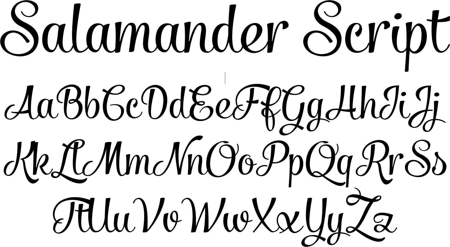 script fonts | Salamander Script Font by Fenotype : Font Bros