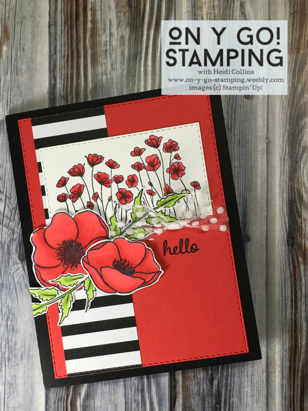 Black, White, and Red Poppies