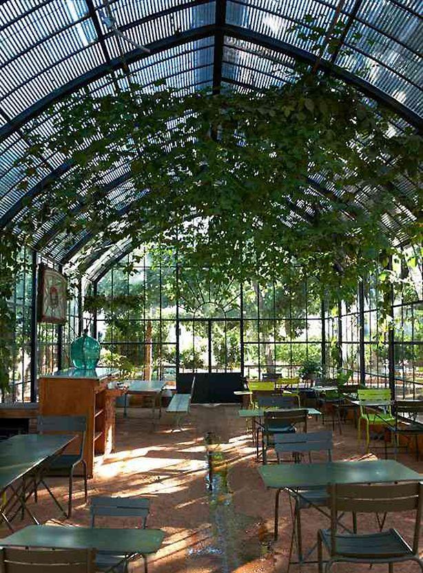 Inside The Greenhouse At Babylonstoren Outside Capetown