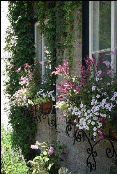 Beautiful iron window boxes!