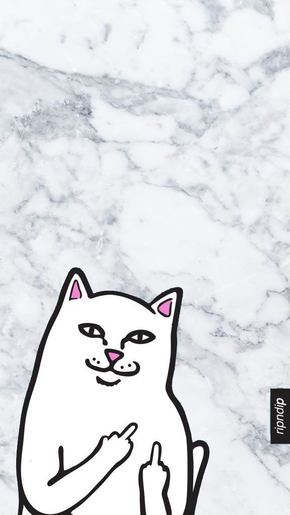 RIP N DIP White Cat W Middle Finger Ripndip Wallpaper