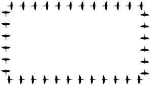 Billedresultat for borders bird