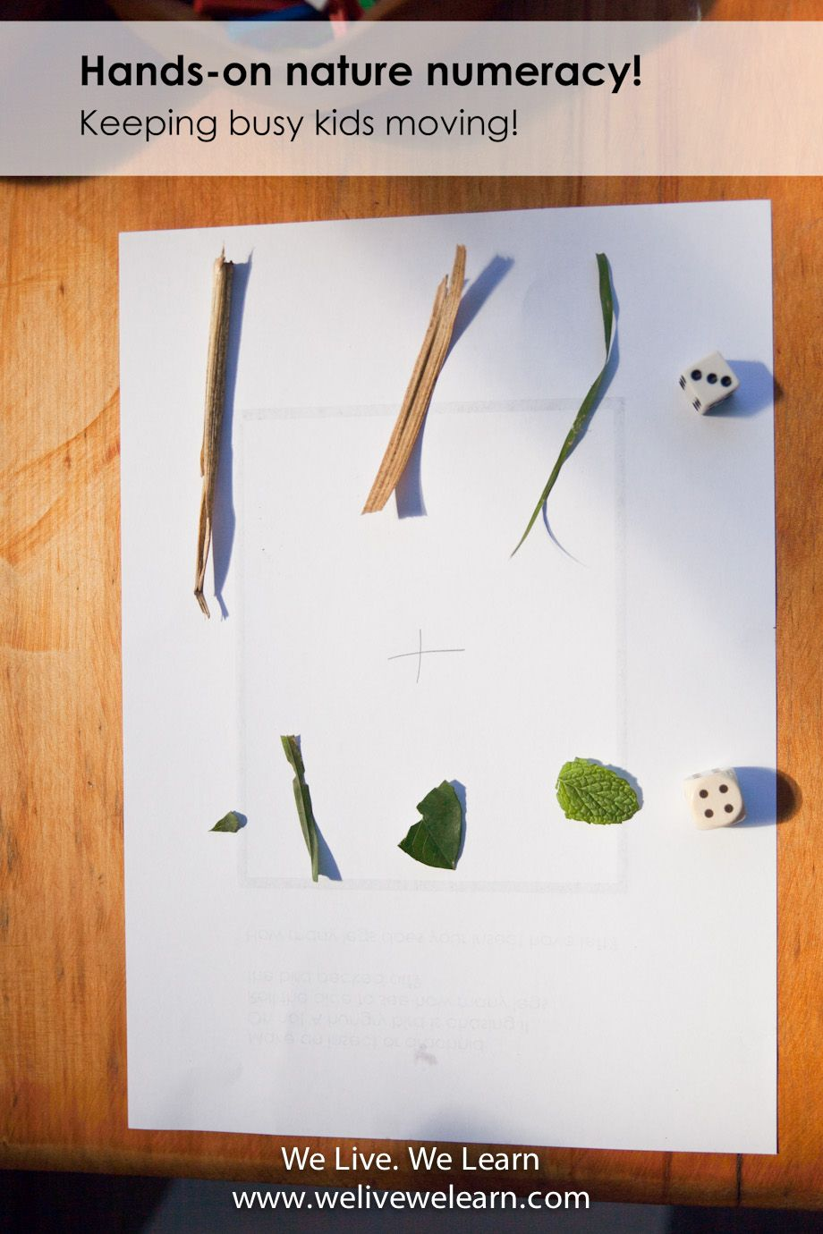 HANDS-ON NATURE NUMERACY – KEEPING BUSY KIDS MOVING!