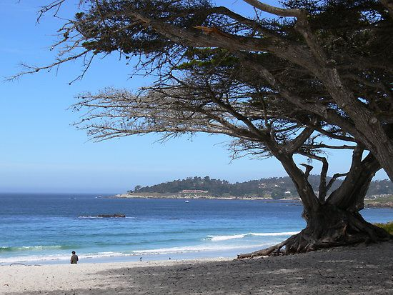 This Beautiful White Sand Beach Is At The End Of Ocean Avenue